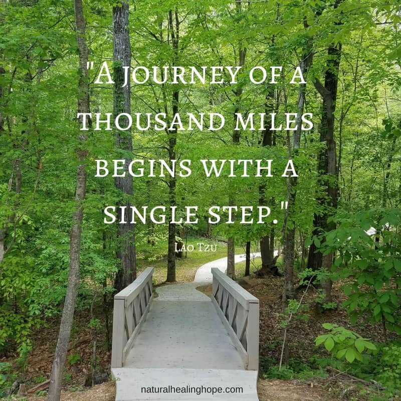 """A journey of a thousand miles begins with a single step."" Lao Tzu"