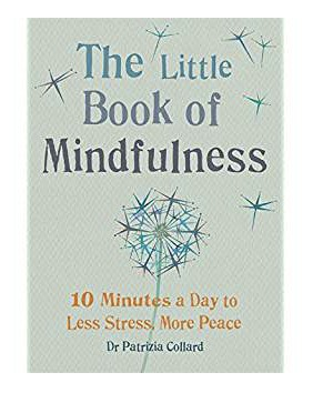 Little Book of Mindfuless