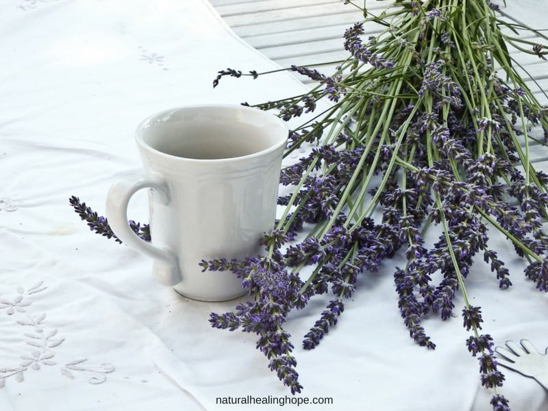 benefits of lavender for our health and wellbeing