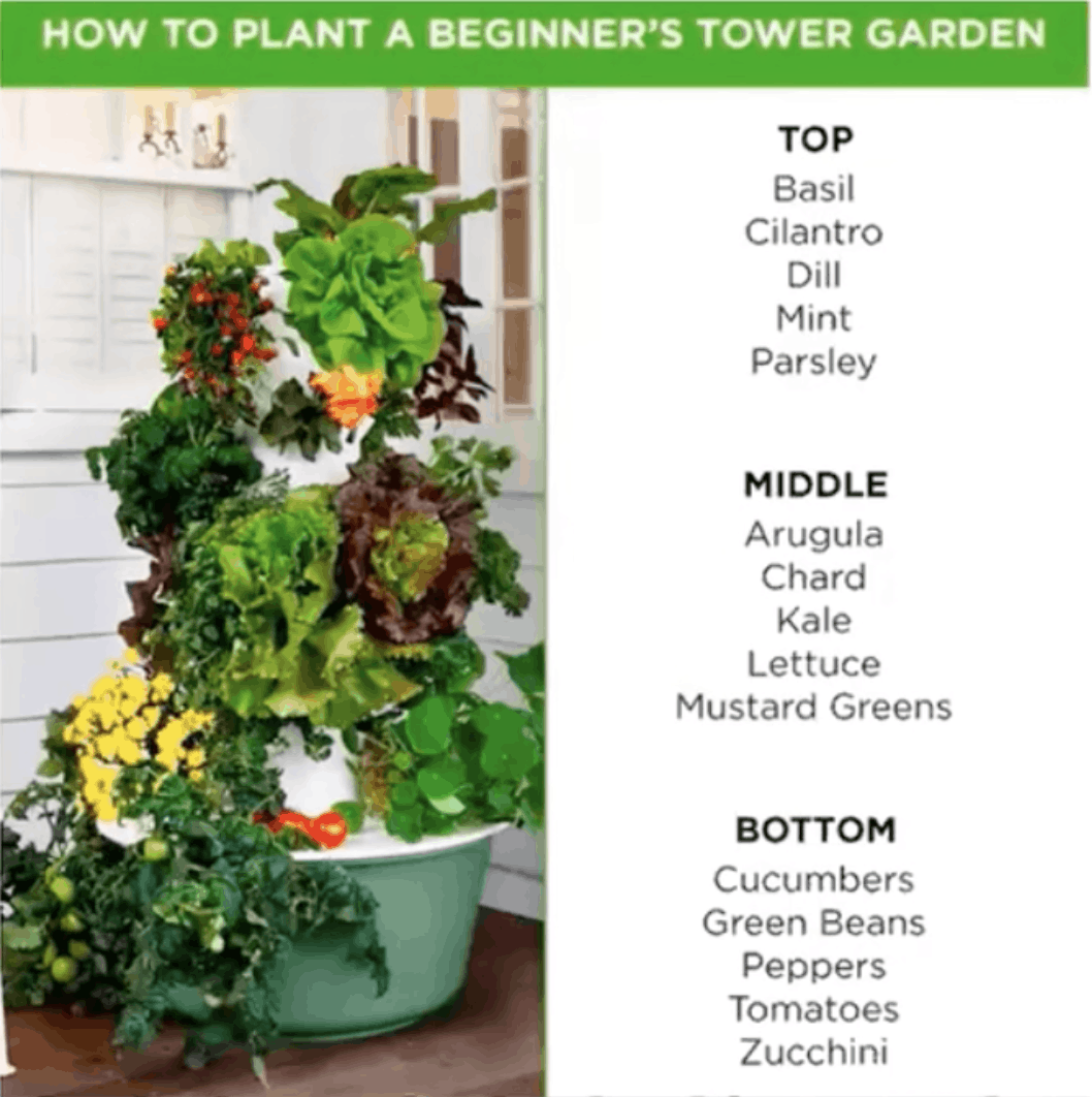 Picture of a tower garden with text that says: How to plant a beginner's Tower Garden.