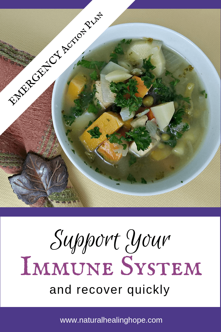 Emergency Action Plan to Support Your Immune System