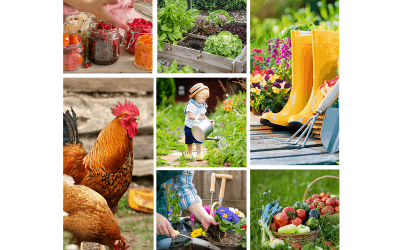 A photo collage of images depicting gardening and sustainable living.