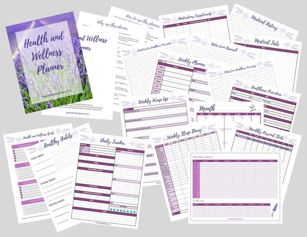 Health & Wellness Planner Layout
