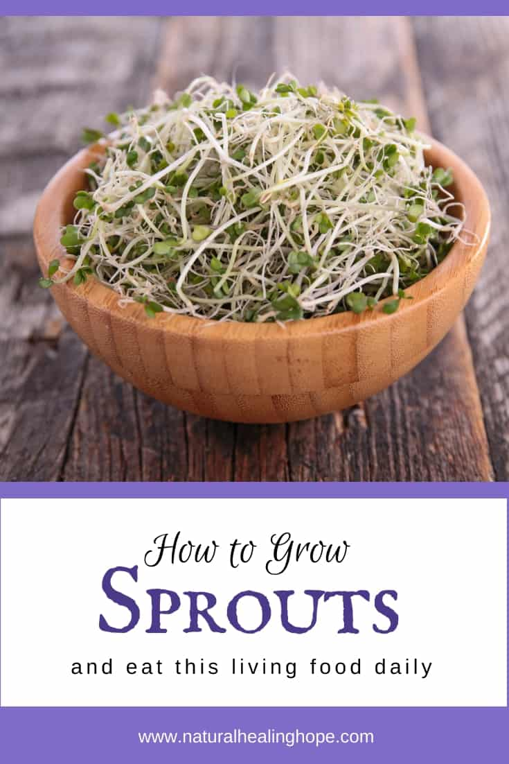 "A bowl of sprouts with text overlay that says, ""How to grow sprouts and eat this living food daily"""