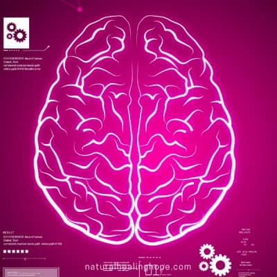 Picture of a Brain: A Nutritional Supplement for Brain Health that can change your life