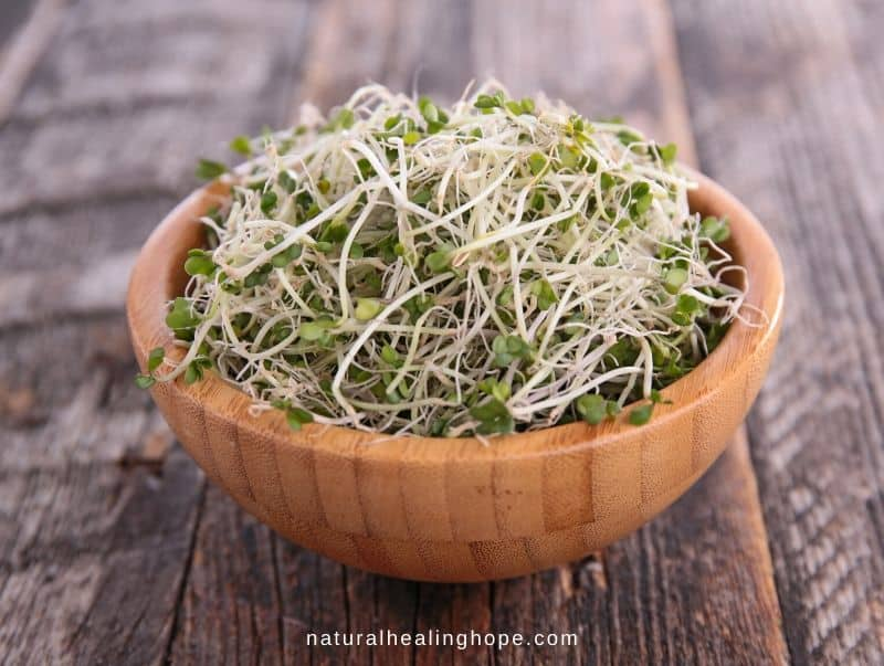 How to Grow Sprouts and Eat This Living Food Daily