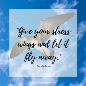 """Give Your Stress Wings and Let It Fly Away"" quote on top of image of seagull soaring in the sky"