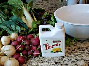 Thieves Fruit & Veggie Soak to Clean Fresh Produce