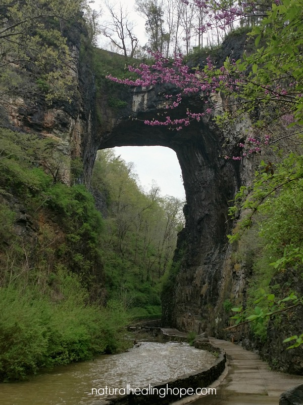 The Natural Bridge in Virginia, our big reward for planning healthy food choices