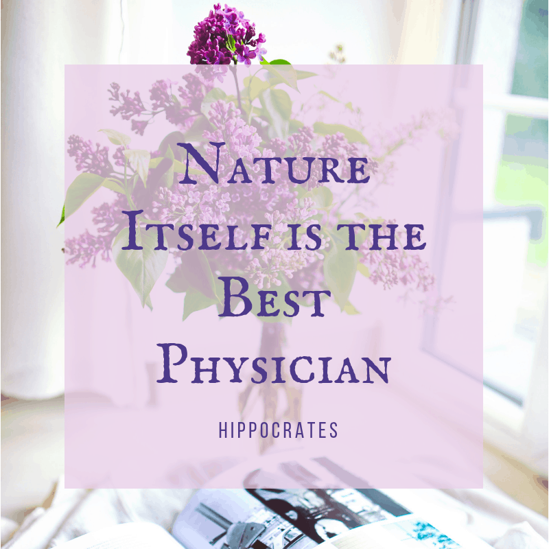 Nature itself is the best physician - Hippocrates quote