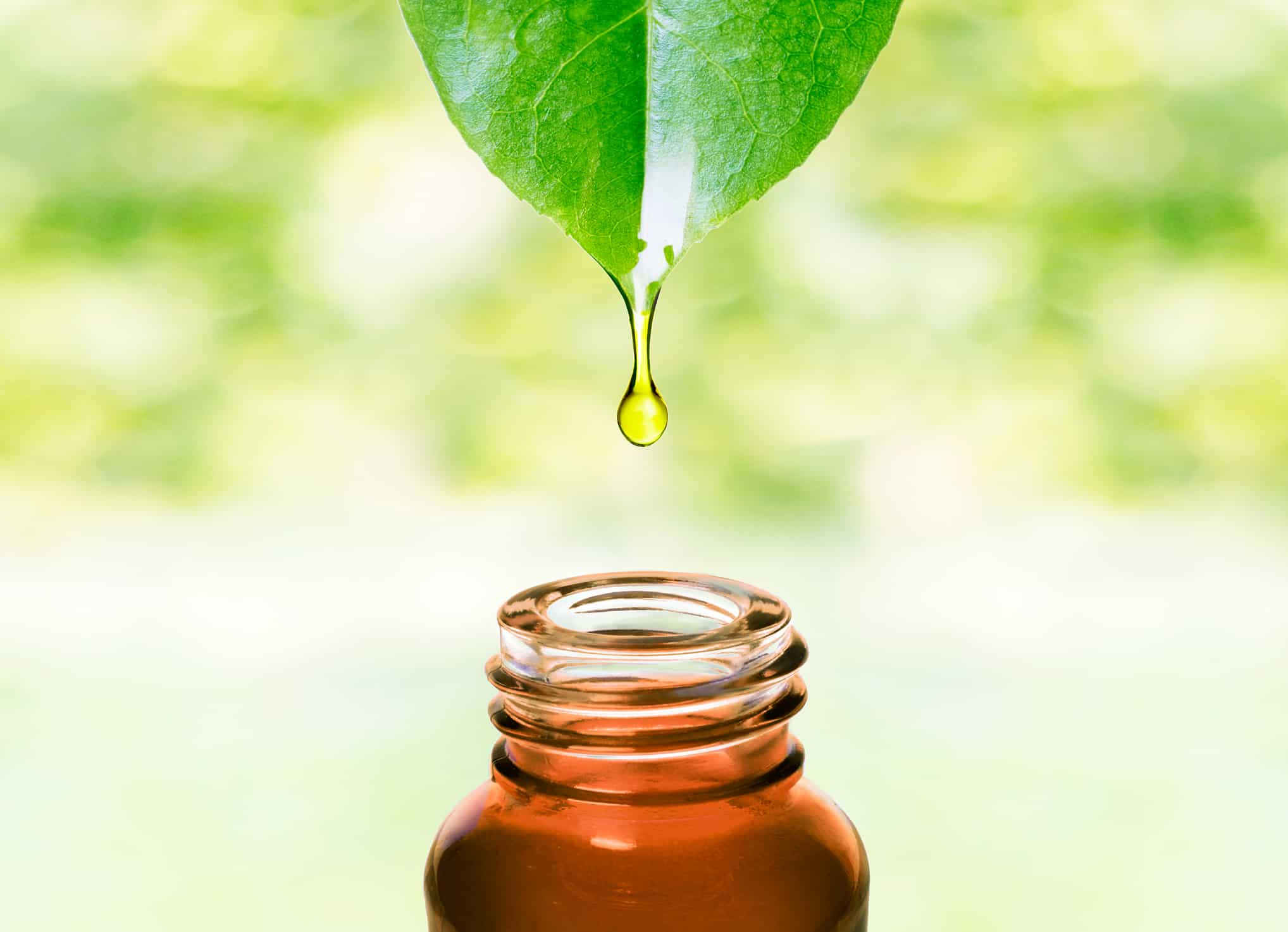 Essential Oils: A Life Changing Journey