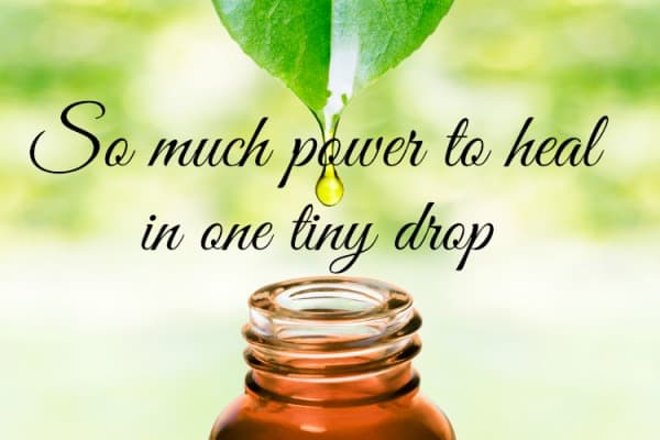 essential oils have so much power to heal in one tiny drop
